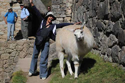 My time in Peru was a blast, partly thanks to new buddies like this llama I met wandering around Machu Picchu.  It's a beautiful country and Ethica Accessories does a lot of good there.